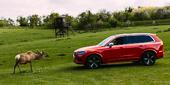 Volvo – České zážitky ve švédském stylu